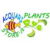 AcquariStore Plants